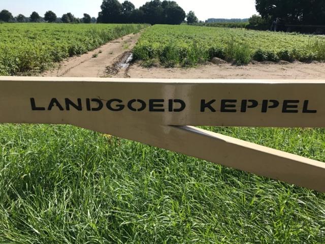 Landgoed Keppel Vakantie Boerderij Achterhoek Liemers Groepsaccomodatie 8465