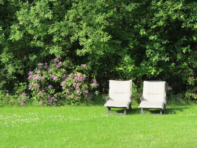 Landgoed Zelle Achterhoek Atilla Loungen In De Tuin Vakantiehuis 8personen