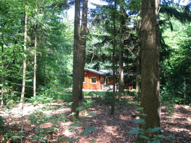 Vakantiebungalow In Het Achterhoekse Bos