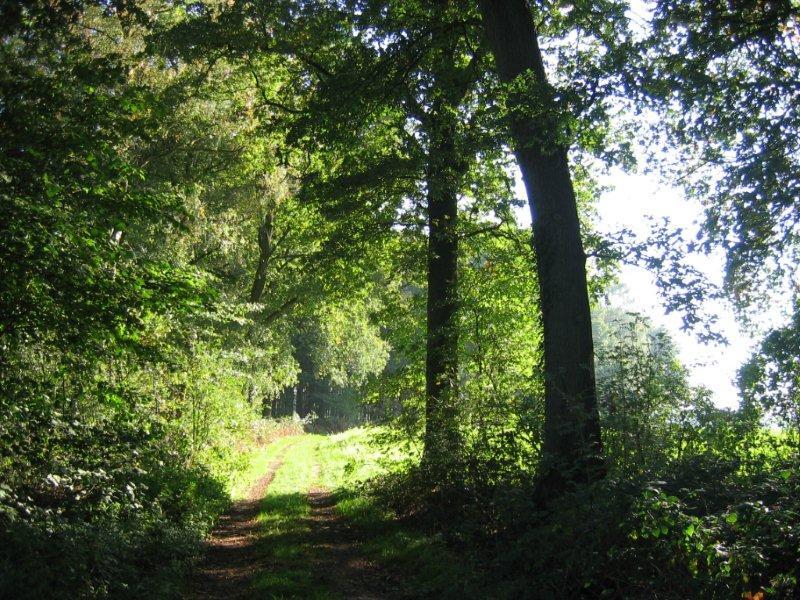 natuur Achterhoek landgoed zelle 1